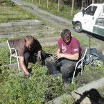 Vorbereitungsarbeiten im Pflanzgarten für Wildbach, 1550 Zirben