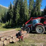 Forstarbeiten Aufarbeitung Windwürfe Chalberläger