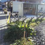 Straßenbeleuchtungslaterne Burgplateau wegen Neubau entfernen