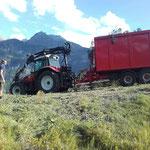 Holzschlägerungs- und Aufräumarbeiten Waldabfahrt