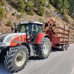 Forstarbeiten Bürstegger Wald, Abtransport Brennholz mit Steyr 6190 CVT