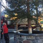Christbaum stellen Dorfbrunnen