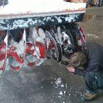 Eingefrästen Wasserschlauch (Baustelle Oberlech Bergbahn) aus Holder befreien