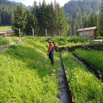 Pflanzgarten auf Vordermann bringen