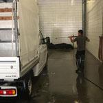 Planenbus reinigen in der Waschhalle