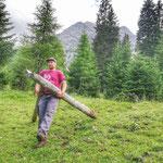 Forstarbeiten Zugertal, Auflösung Vergleichsflächen
