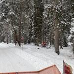 Snow Rabbit 3, Winterwanderweg Waldbad-Tannberg...