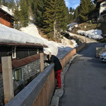 Geländererhöhungen abbauen Burgwaldweg...