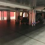Umbau sport.park und Bühnenaufbau für Musikkabarett mit Gaby Fleisch
