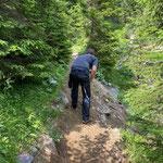 Wegsanierung Lechweg, Engerle Wald - Rudalpe