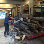 Grillholz ablängen am Bauhof