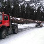 Holztransport mit U1600 und Nachläufer für Flugdach Bauhof