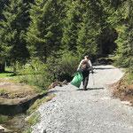 Müll zwicken Wege rund um's Waldbad