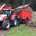 Forstarbeiten Hoher Steg