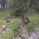 Holzarbeiten zwischen Alptobel und Rinderläger