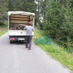Forstarbeiten Zuger Wald, Schonungsgitter- und Pfähle entfernen und verladen