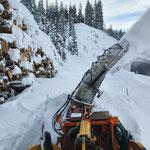 Drittleistung für Heizwerk Lech, auffräsen Holzrolle