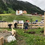 Erste Bäume und Sträucher wässern