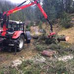 Forstarbeiten Brazer Schneeflucht...