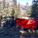 Äste sammeln Hintereggenwaldweg, mit Steyr 6190 CVT