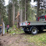 Wildschutzgatter Engerle Wald, Baustahlgitter für Tor liefern mit Lindner Unitrac, Maschendrahtzaun befestigen