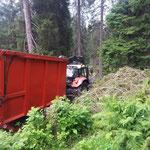 Holz einfassen im Churliswàld