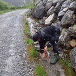 Stierloch Rad- und Wanderweg warten...