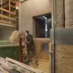 Absaugung leeren Tischlerei Bauhof