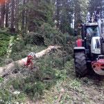 Holzlos richten Bürstegger Wald, mit Steyr 6190 CVT und U1600 mit Winde
