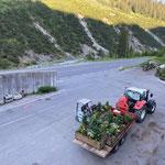 Blumentröge verladen am Bauhof