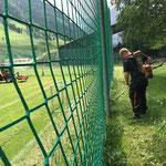 Fußballplatz Rasenpflege