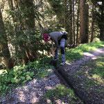 Wegepflege: Rinnenputzen Burgwaldweg