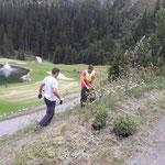 Bepflanzungen rund um das Heizwerk Zug