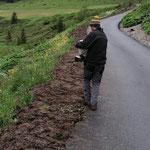 Anger Umfahrungsstraße: Einsäen nach Rückbau und Humusierung
