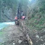 Drittleistung: Bäume holen Schlucht Schmelzhof mit Steyr 6190 CVT