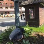 Gärtnerarbeiten beim Kampen-Buswartehaus