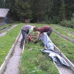 Das Wald-Team bei Pflanzgartenarbeiten