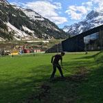 Fußballplatz: Mausgräben einebnen