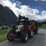 Holztransport zur Sägerei