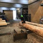 Anfasen der Stämme für Bauhof-Flugdach