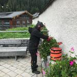 Blumenpflege beim Kirchenaufgang...