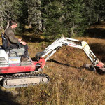 Forst: Dreiländereck, Baggerarbeiten zur Waldverjüngung