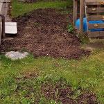 Aufräumen und begrünen Wasserrohrverlegung Tannberg