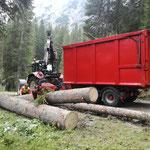 Forstarbeiten im Zugertal