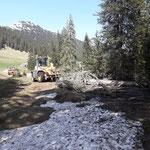 Umgestürzten Baum von Straße bewegen beim Älpele....