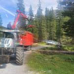 Forstarbeiten Johannestal, ausformen Windwurfschäden