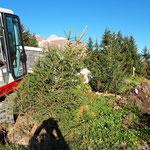 Drittleistung für Sky Space Lech, Bäume einpflanzen mit TB216...