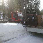 Materialtransporte für Baustelle Schwimmbad, mit Snow Rabbit 3
