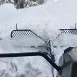 Snow Rabbit, Winterwanderwegpräparierung Gumorwald...