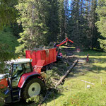 Forstarbeiten Windwürfe Spullerwald, mit Steyr 6190 und 6240 CVT